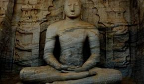 Fot. Rajitha / Pexels.com