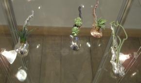 Naczynia na sukulenty Beaty Ciesielskiej